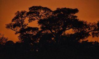 TGIF...Friday  Sundown...Have A Great Weekend Boca!  Photo Courtesy Rick Alovis
