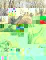 BDSwolfs_Page_01.jpg