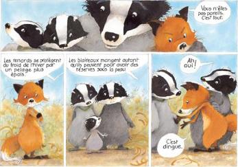 monsieur_blaireau_et_madame_renarde_image