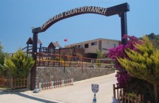 Horse Riding Centre in Turgutreis Turkey