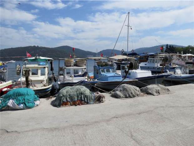 Golkoy Fishing boat harbour