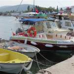 Golkoy Harbour and Boat Trips