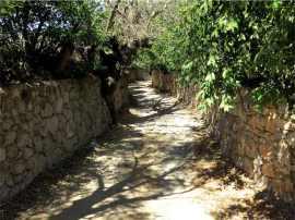 Bitez lane between beach and village Bodrum Peninsula Turkey