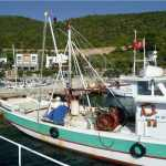 Torba Fishing Boat Trip Bodrum Turkey
