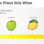 Guide to Pinot Gris Wine