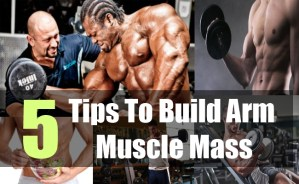 5 Tips To Build Arm Muscle Mass