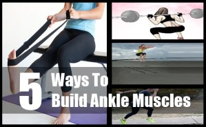 Ankle Muscles