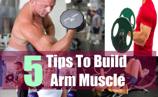 5 Tips To Build Arm Muscle