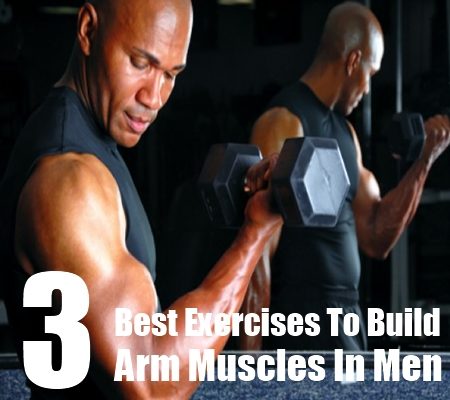 Arm Muscles In Men