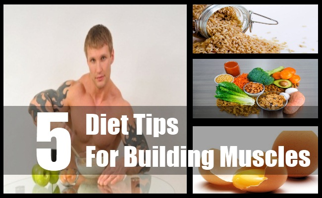 Diet Tips For Building Muscles