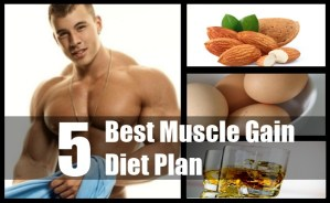 Gain Diet Plan