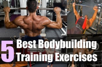 5 Best Bodybuilding Training Exercises