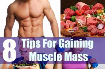 8 Various Tips For Gaining Muscle Mass