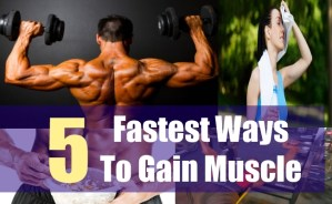 5 Fastest Ways To Gain Muscle