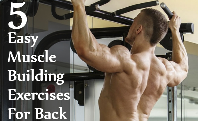5 Easy Muscle Building Exercises For Back BodyBuilding eStore