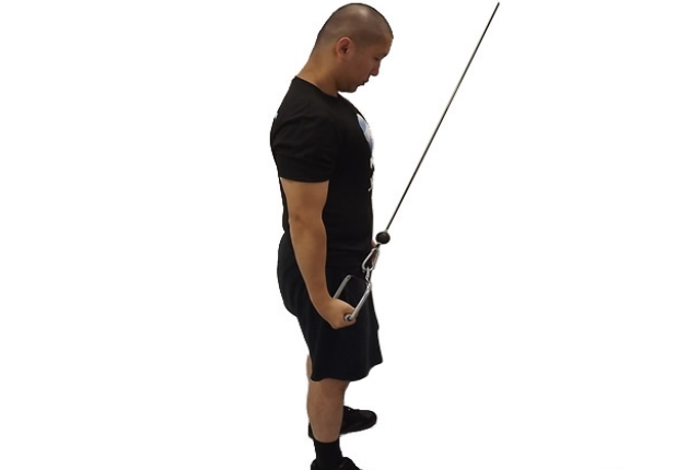 Cable Tricep Extension : Top effective triceps workouts for men to build toned
