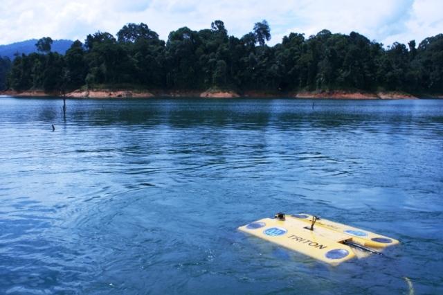 Sawfish Lake Kenyir.jpg