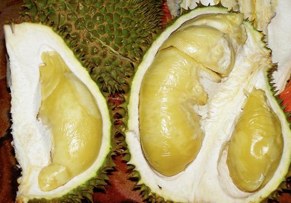 durianphoto.jpg