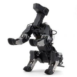 _g_robots_g_dog_3.JPG