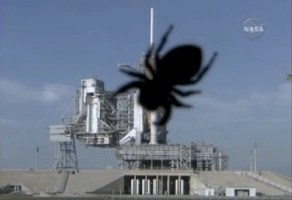 Spidershuttttle