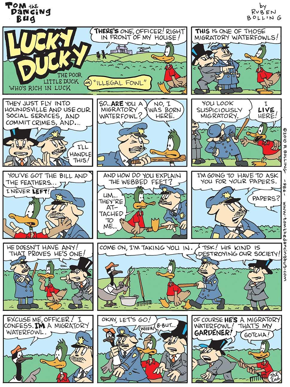 986cb-ld---illegal-fowl.jpg
