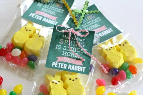 +Peter-Rabbit-Treat-Bags