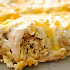 These creamy mushroom pepperjack enchiladas are SO good! Amazing leftovers, too!