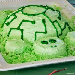 How to Make a Wild Kratts Tortuga Cake