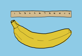 cartoon banana against ruler