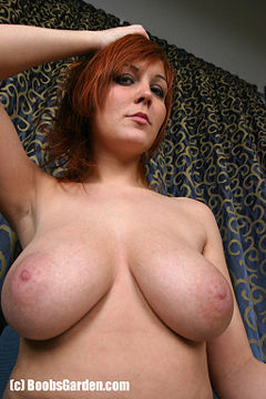 a cup breasts perfect