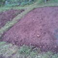 tilled beds