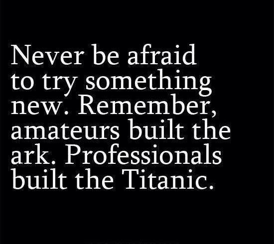 Professionals built the Titanic