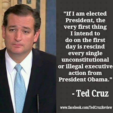 Ted Cruz election promise