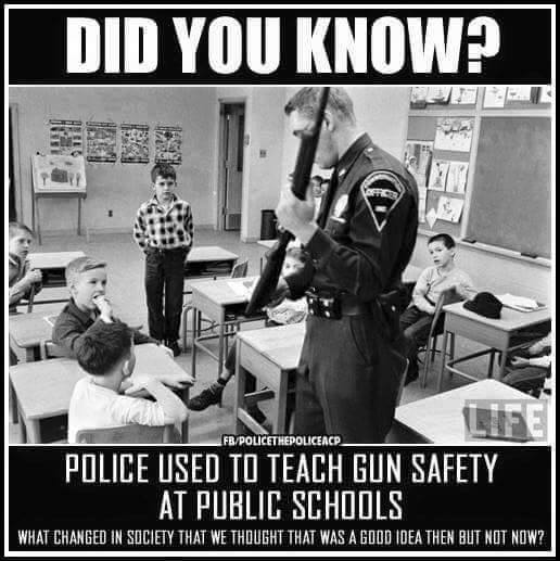 Gun safety in schools