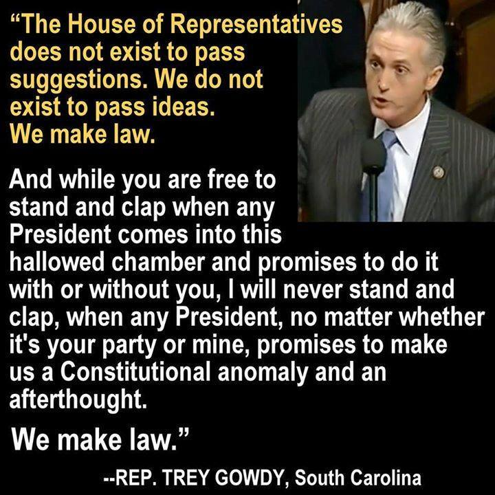 Trey Gowdy on Congress's mandate to write laws