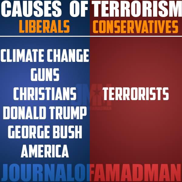 Causes of terrorism
