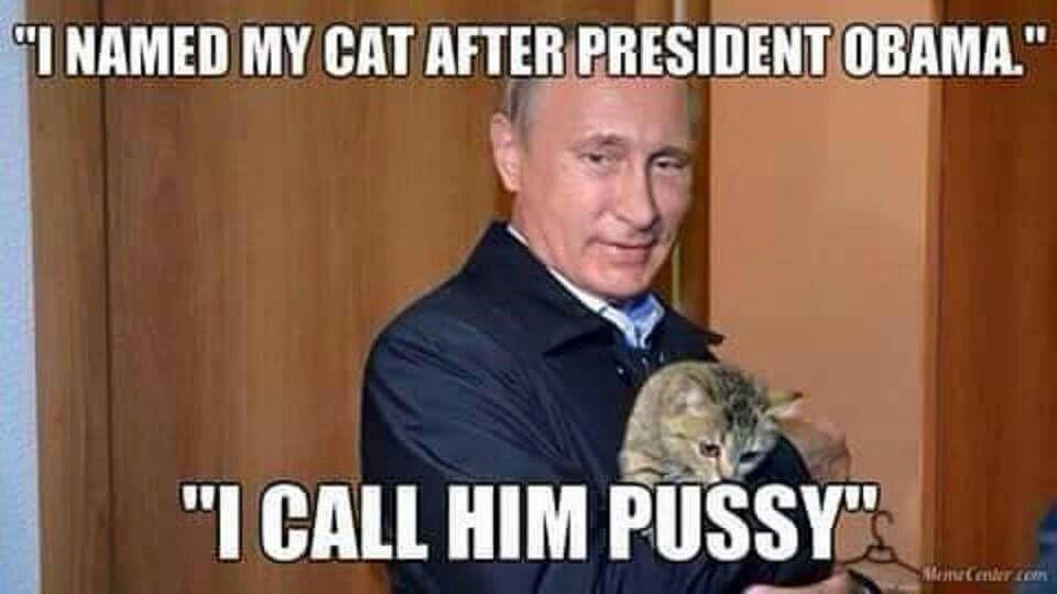 Obama and Putin's cat