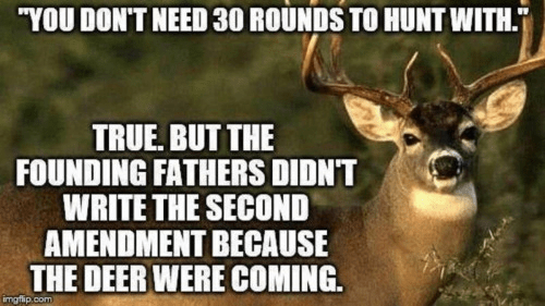 Second Amendment deer hunting