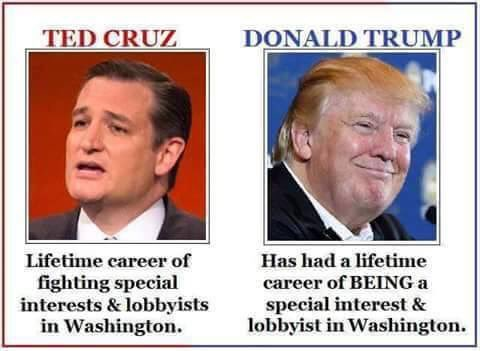 Difference between Cruz and Trump