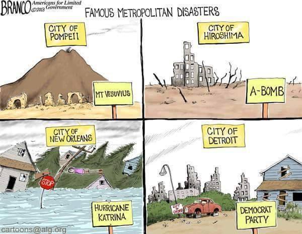 Stupid liberals Detroit Democrat Party