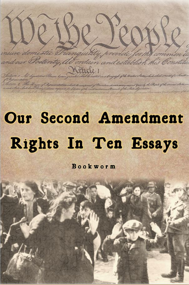 amendment essay The nra civil rights defense fund sponsors a scholarly writing contest for  grades k-12 the theme for the essay is what does the second amendment  mean.