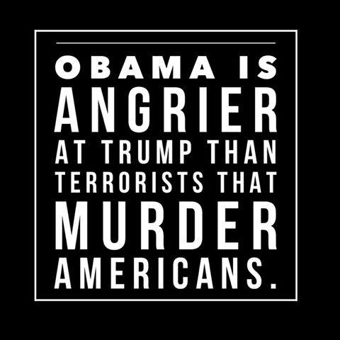 Obama-angry-at-Trump-not-terrorists