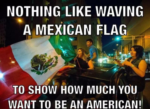 Stupid Leftists Mexican flag