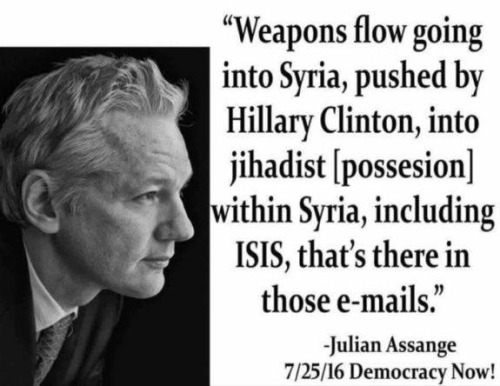 Hillary Assange on contents of Hillary's hacked emails