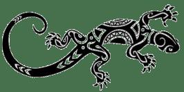 gecko stencil in bora bora tahiti