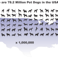 New data released by the ASPCA, HSUS, and the American Pet Products Association's National Pet Owners Survey show that shelter killings are at an all time low in both whole numbers […]