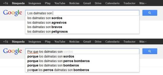 google_dalmatian_mexico