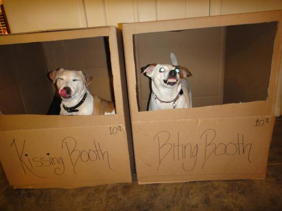 Kissing Booth vs. Biting Booth