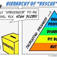 Hello Pitty: Hierarchy of Rescue Smugness