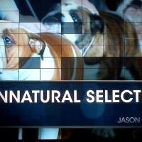 "Watch RealSports ""Unnatural Selection"" on AKC Dogs"
